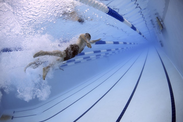 swimmers-swimming-race-competition-56837